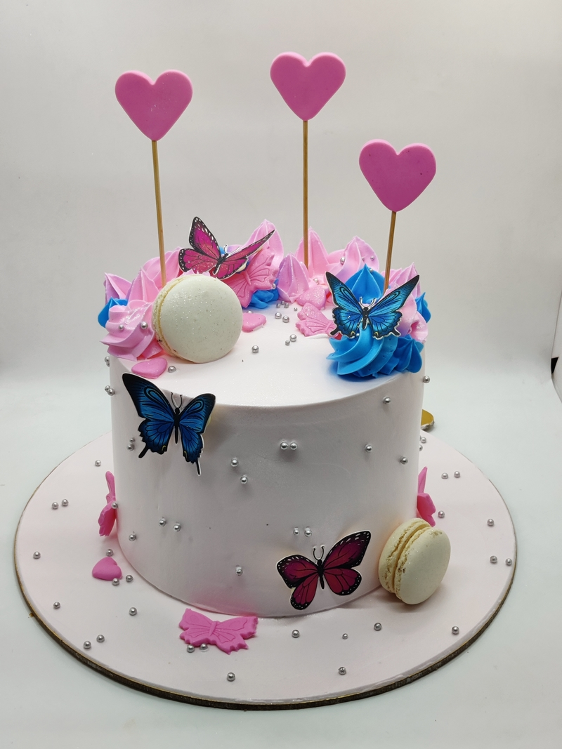 A CAKE WITH BUTTERFLY AND MACRONS