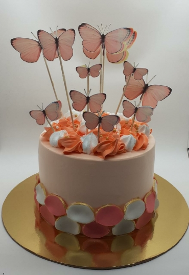 CAKE WITH BUTTERFLY